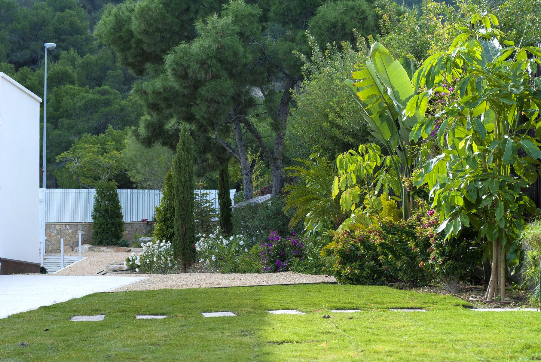El jard n de laura jard n de matices en villa alicantina for Diseno jardin mediterraneo