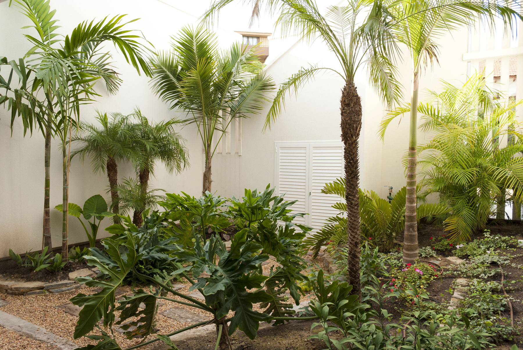 Diseno de jardin peque o david jim nez arquitectura y - Diseno jardines madrid ...