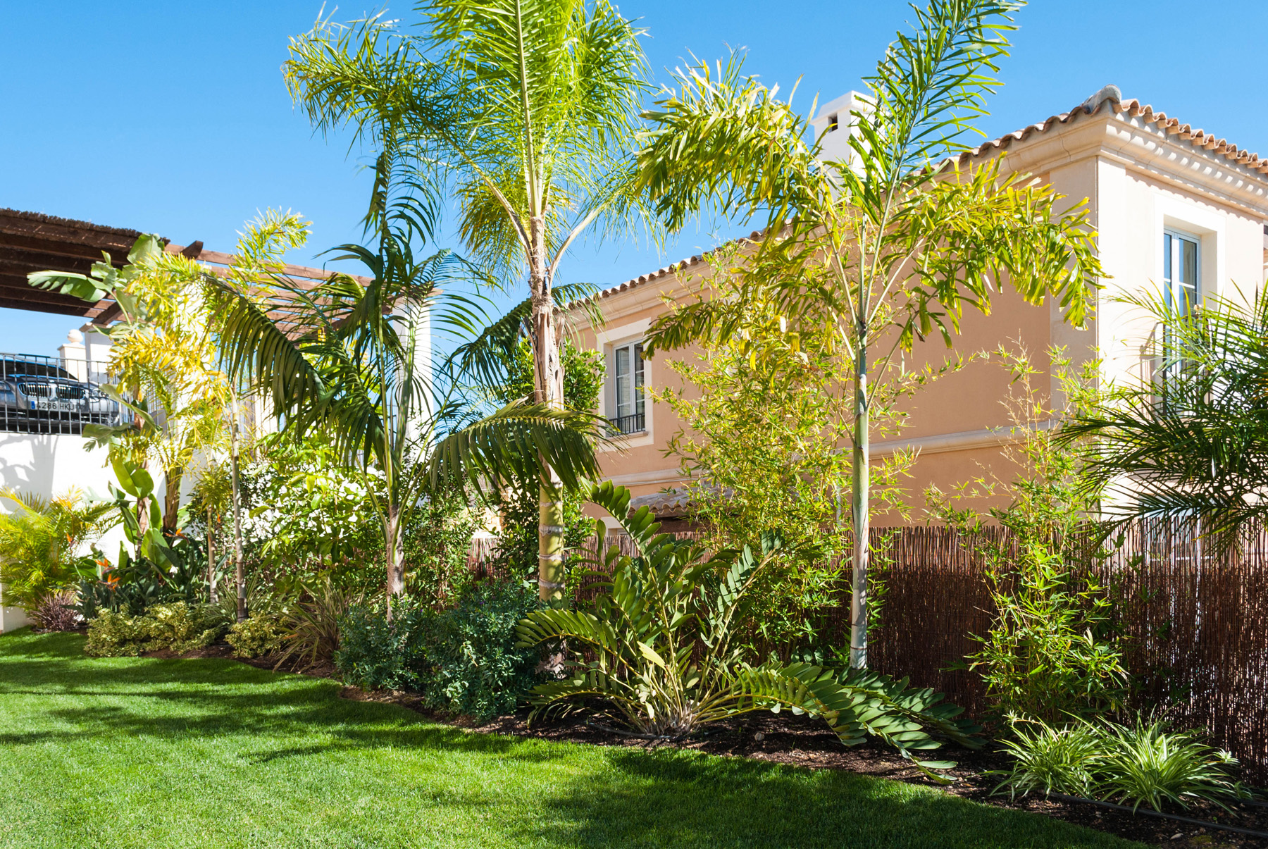 Diseno de jardin tropical david jim nez arquitectura y paisajismo en madrid - Diseno jardines madrid ...