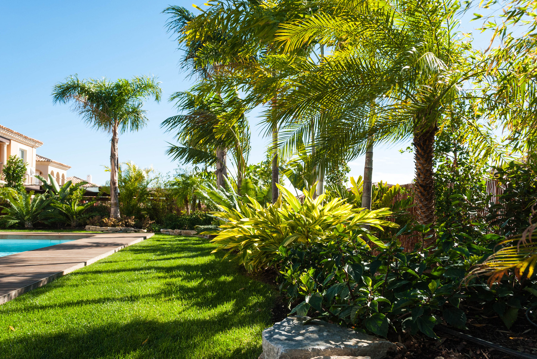 Dise o de jard n tropical villa de lujo en benidorm for Diseno de jardines