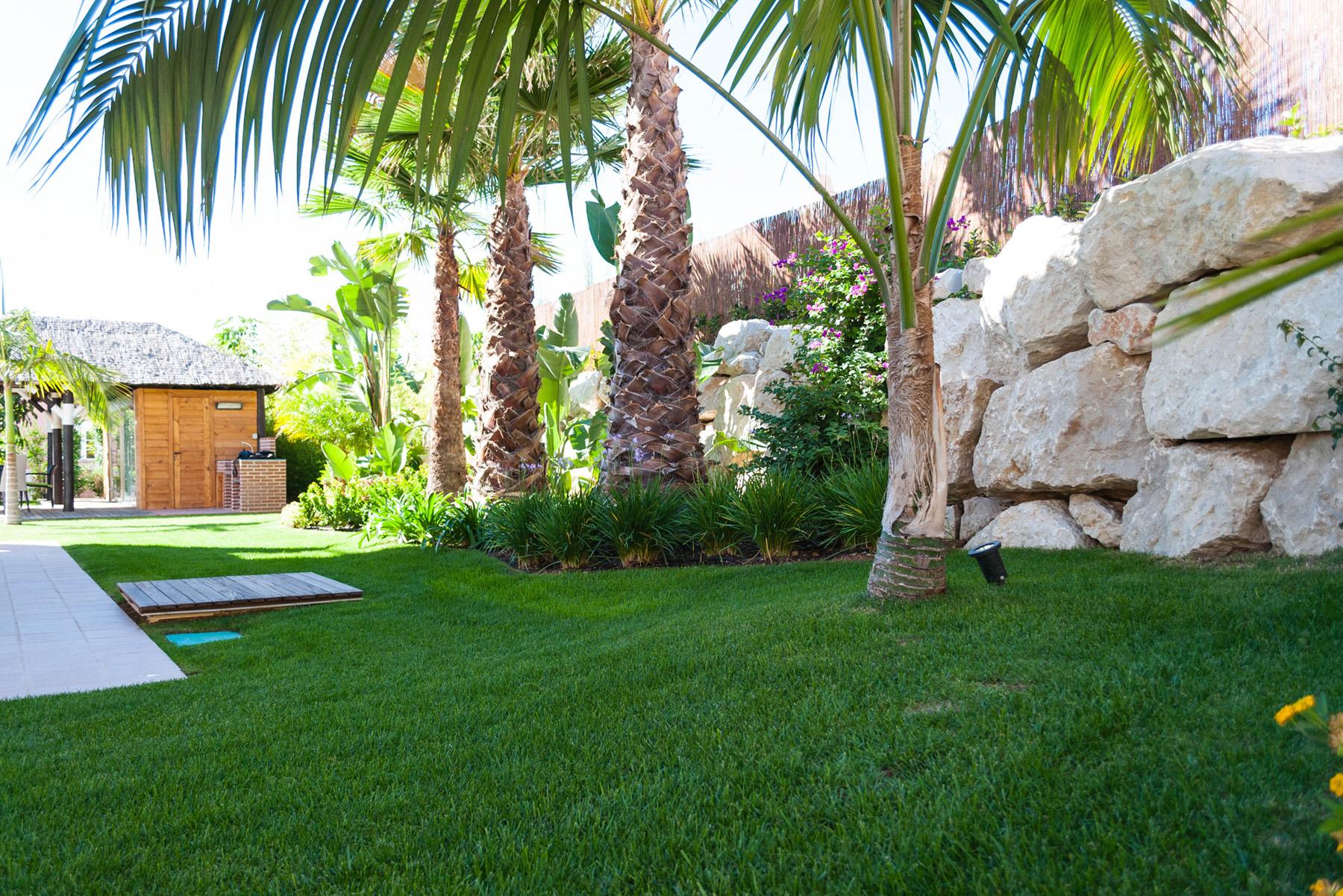 Pradera de cesped en jardin david jim nez arquitectura for Diseno de jardines madrid