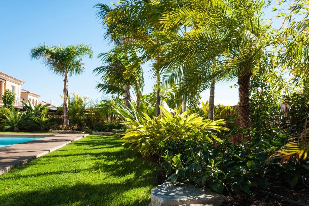 Dise o de jard n tropical villa de lujo en benidorm for Diseno jardin con piscina