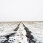 Los paisajes melancólicos de Brya Schutmaat.