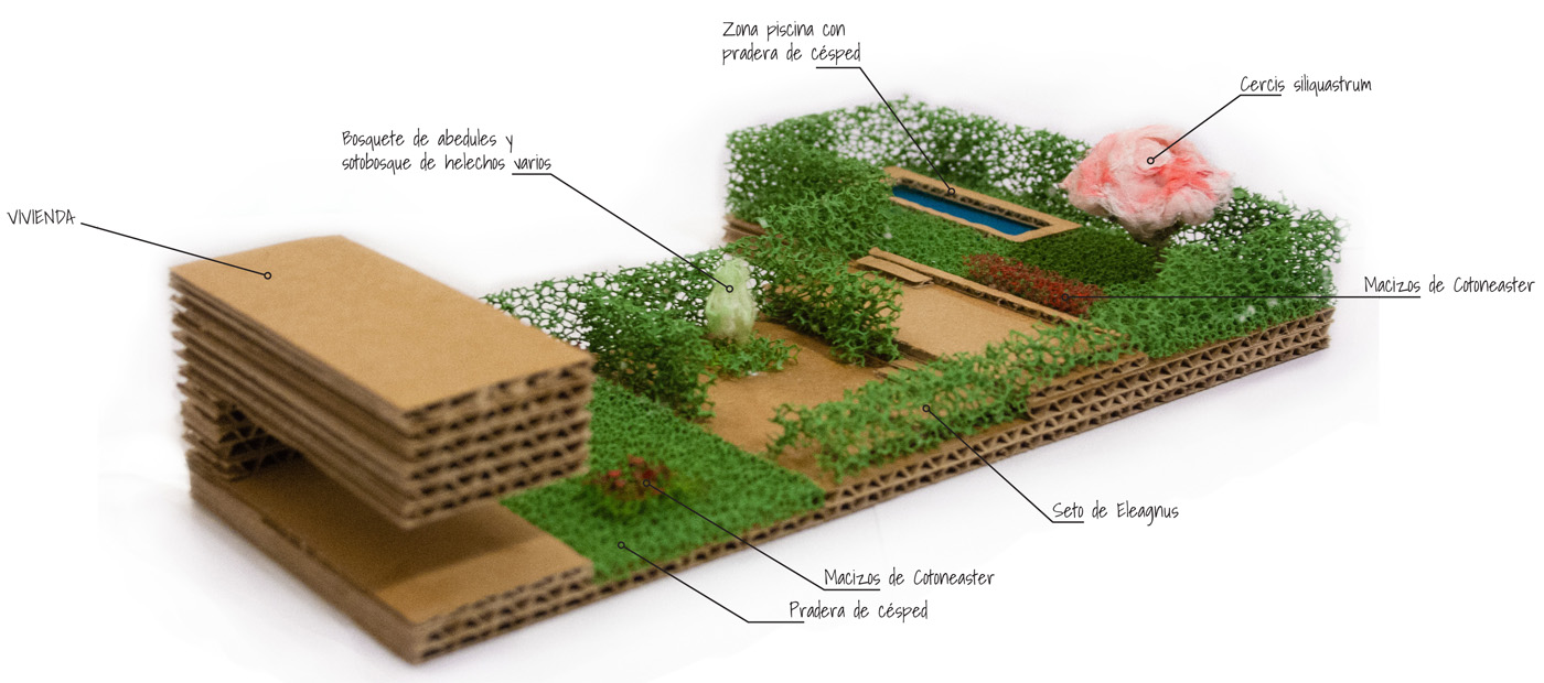 Dise o de jardines david jim nez arquitectura y - Diseno de un jardin ...