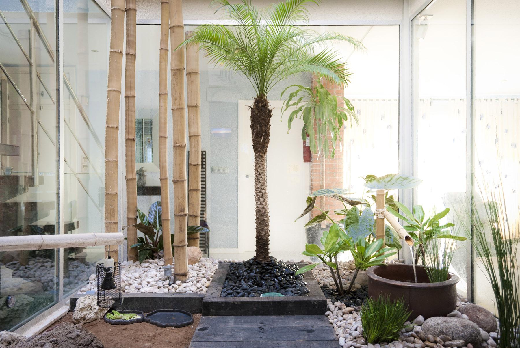 Terrario para tortugas en patio interior jard n japon s - Plantas para jardin zen ...