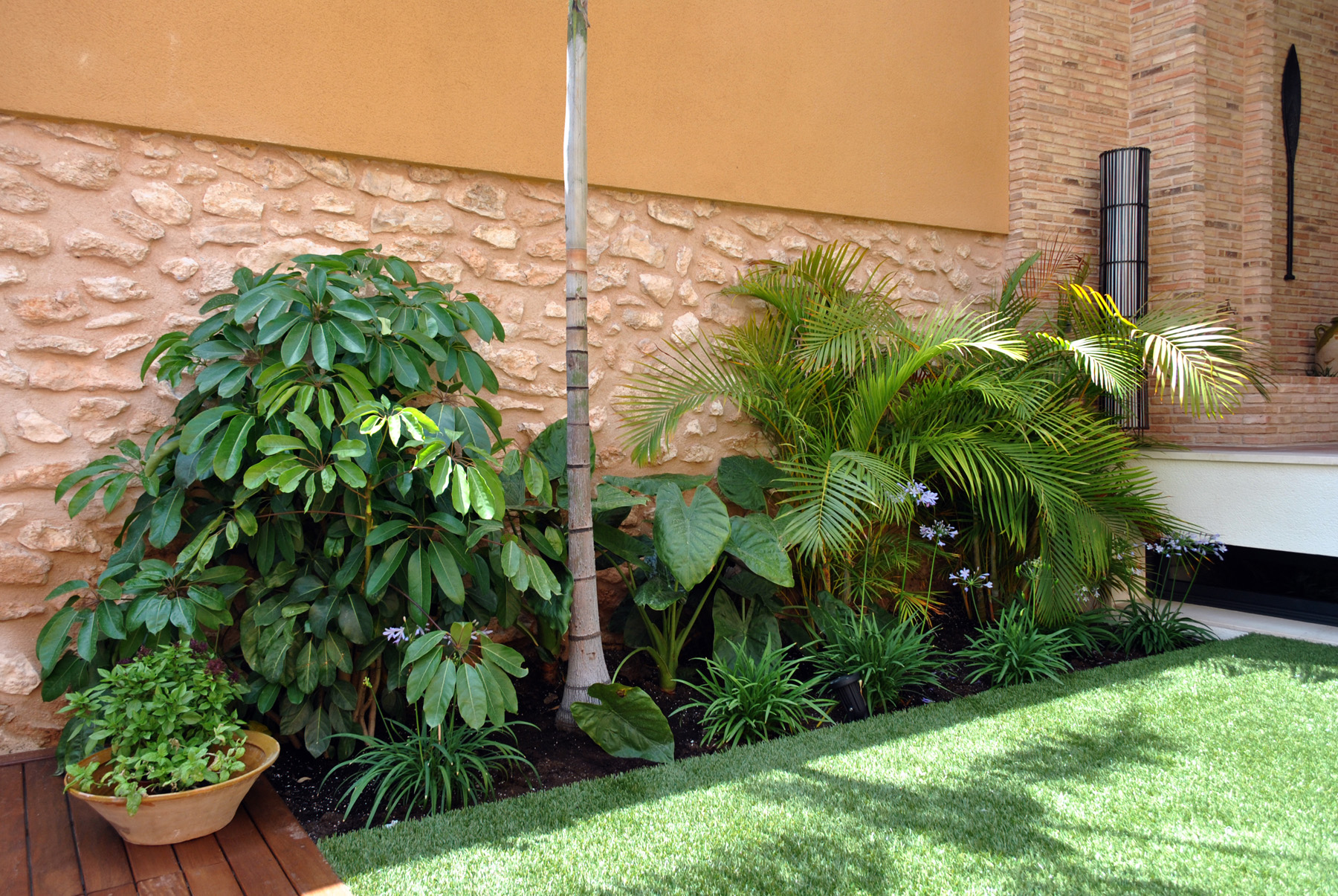 Jardinera con planta tropical david jim nez for Planta arbustos para jardineras