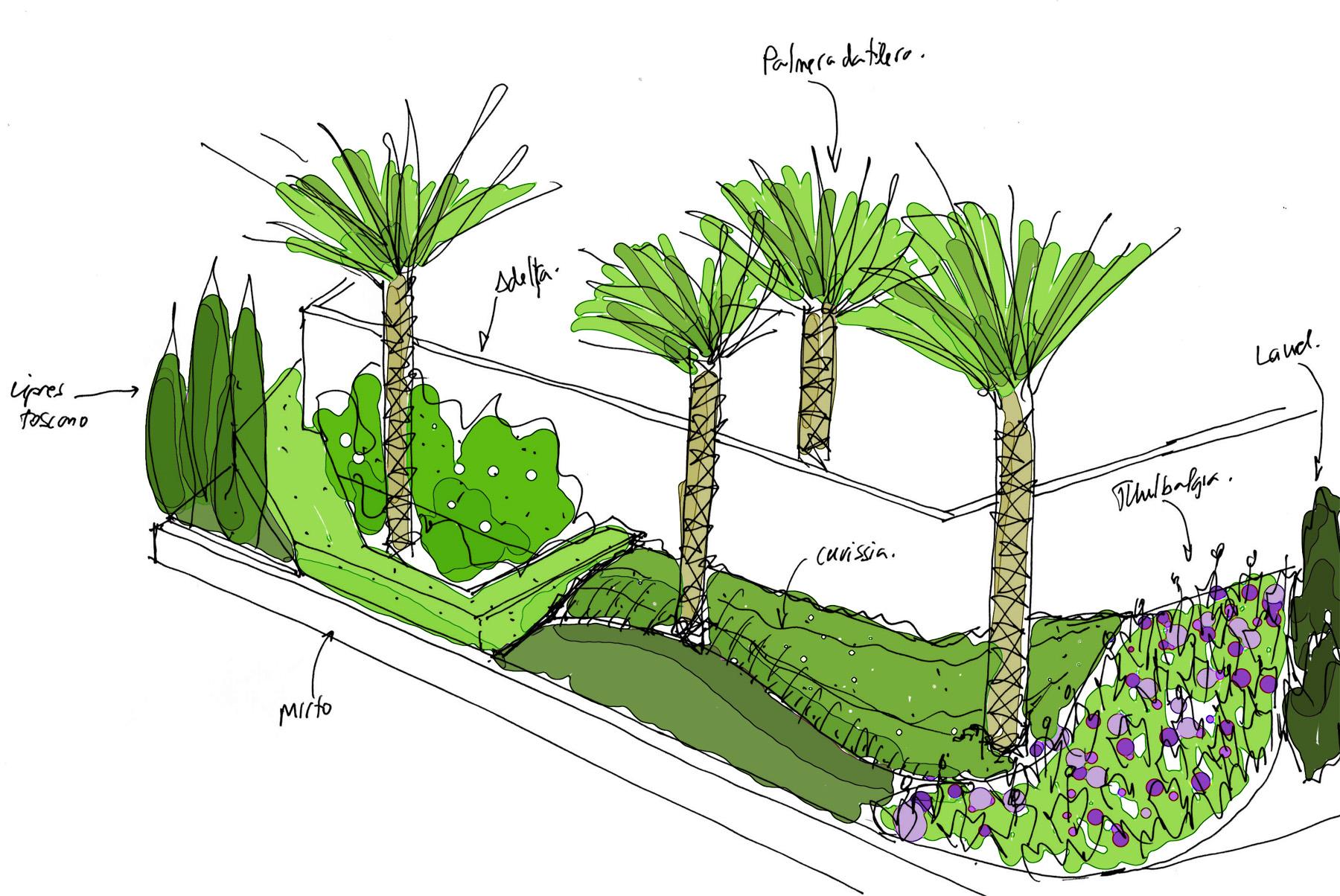Claves para dise ar un jard n i david jim nez - El jardin mediterraneo ...